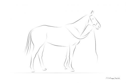 Standing Horse pos